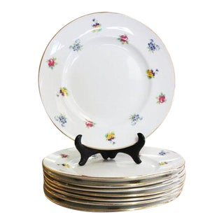 Early 20th Century Staffordshire Plates - Set of 8 For Sale
