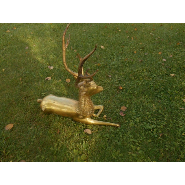 Mid-Century Stag Deer Brass Statue - Image 4 of 8