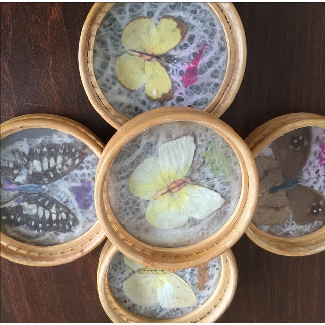 Vintage Butterfly Coasters - Set of 5 - Image 9 of 11