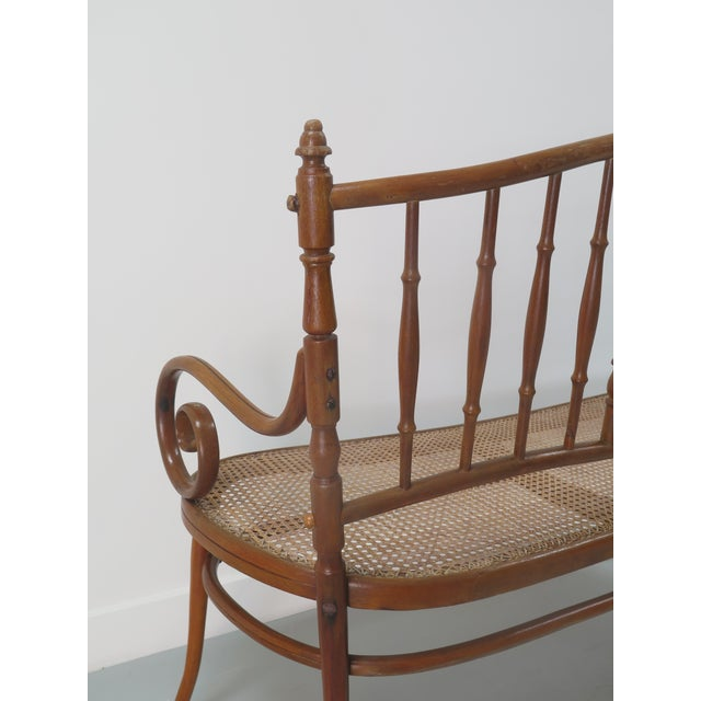 Early 20th Century Early 20th Century Thonet Style Bentwood and Caned Settee For Sale - Image 5 of 13