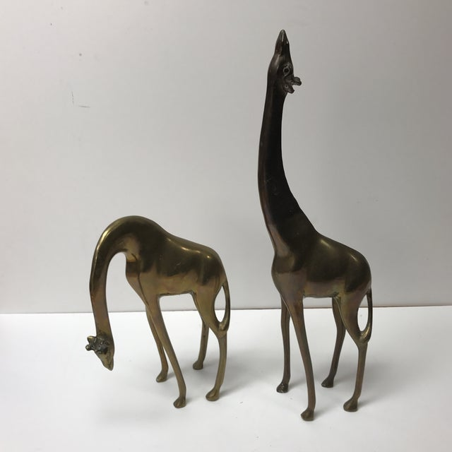 Pair of Mid-Century Modern Asian Brass Giraffes Accent Decor Animals For Sale In Miami - Image 6 of 6