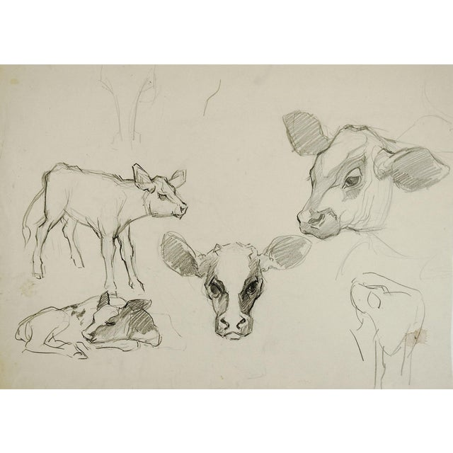 Pencil Study of Calves For Sale - Image 5 of 5