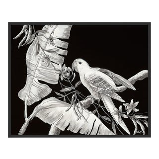 Solo by Allison Cosmos in Black Framed Paper, Medium Art Print For Sale