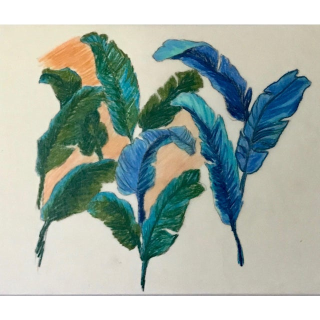 Illustration Vintage Original Pastel Drawing of Feathers Tropical Birds For Sale - Image 3 of 6