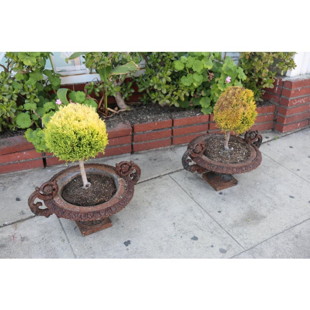 Antique Victorian 1920's Pair of Cast Iron Urns For Sale In Los Angeles - Image 6 of 13