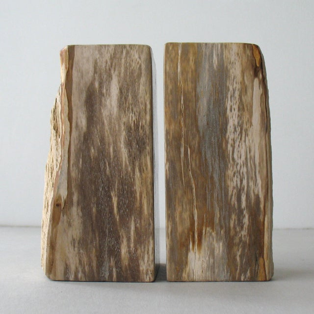 Petrified Wood Bookends - A Pair - Image 3 of 9