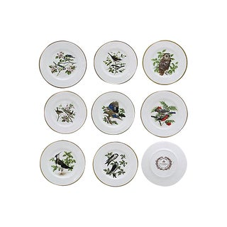 Vintage Coalport British Birds Dinner Plates - Set of 8 For Sale
