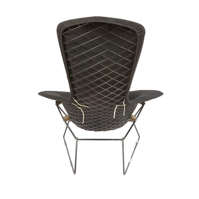 Vintage Bertoia bird chair and ottoman with full cover in Classic black bouclé for Knoll.