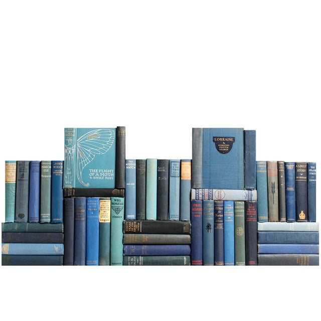 Vintage Blue Decorative Book Wall - Set of 50 For Sale - Image 4 of 4