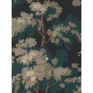 Sample, Scalamandre Raphael, Black/Dark Green/Lh Wallpaper For Sale