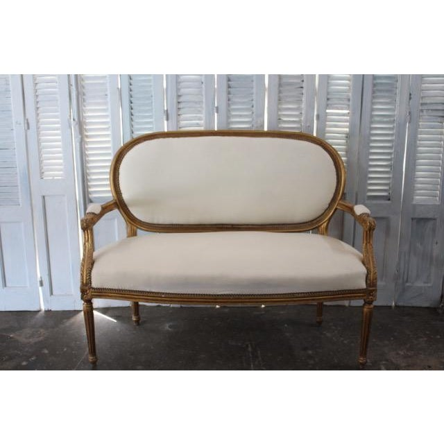 Louis XVI style oval back settee with tapered legs, padded arm rests, and rosette carvings. Although a vintage antique,...