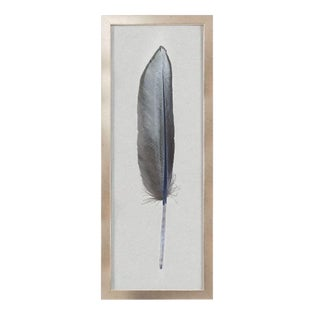 Sterling Feathers 1 Painting