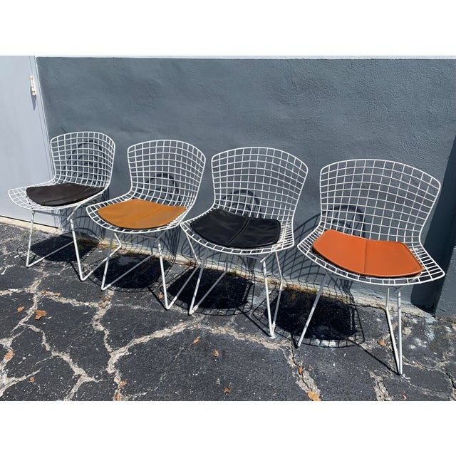 Vintage Mid Century Modern Dining Chairs by Harry Bertoia for Knoll - Set of 4 For Sale - Image 13 of 13