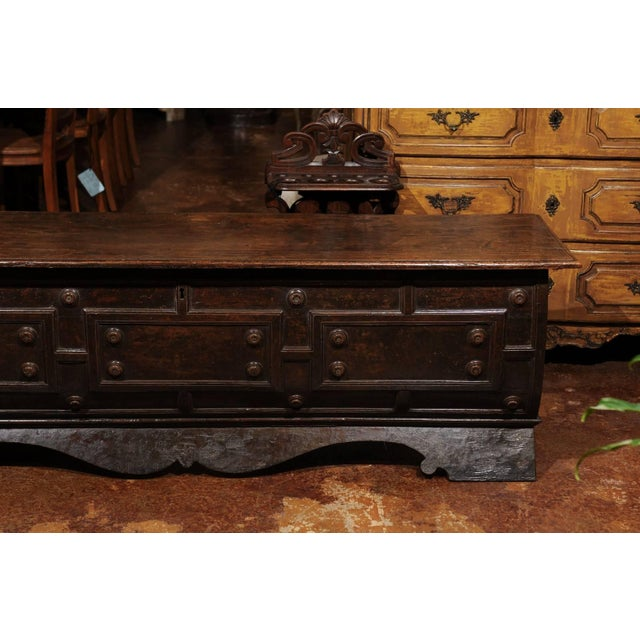 Early 18th Century Early 18th Century Italian Hand-Carved Walnut Cassone Chest from Siena For Sale - Image 5 of 10