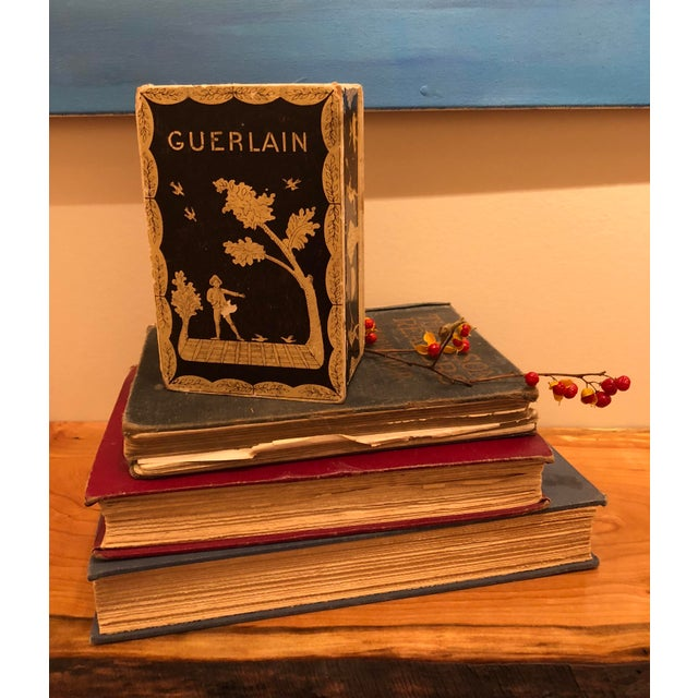 Vintage Mid-Century Hinged Guerlain Box For Sale - Image 11 of 12