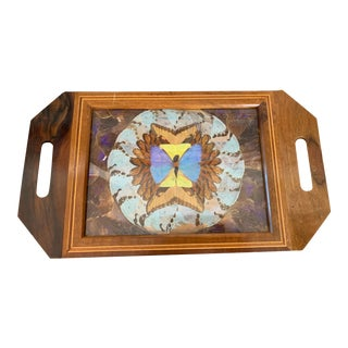 Vintage Butterfly Wing Wall Hanging For Sale