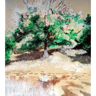 Sunlit Tree Plein Air Landscape Painting For Sale
