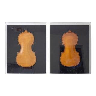 Framed 19th Century Violin Backs - a Pair For Sale