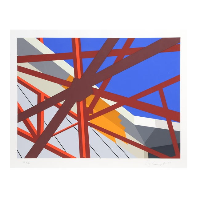 Allan D'Arcangelo, Web, Abstract Silkscreen For Sale