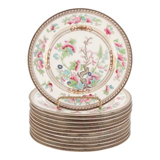 Royal Doulton 19th C. Dresden Fine China in 'Tree of Life' Pattern, Set of 12 For Sale