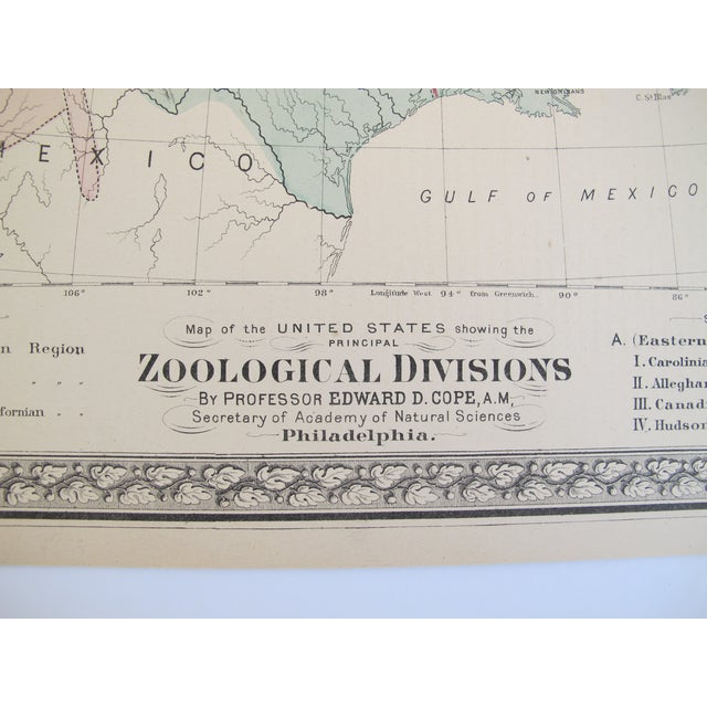 Zoological Divisions of the United States - Image 3 of 4