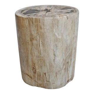 Petrified Stump Side Table / Stool