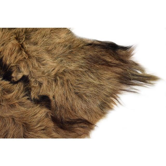 Handmade Long Hair Goatskin Pelt 2 0 X 3 0 Chairish