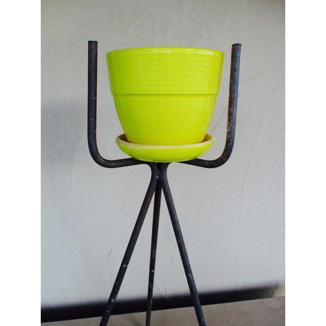 Mid-Century Yellow Ceramic Planter Pot & Iron Tripod Stand - Image 5 of 6