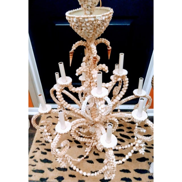 This is a massive gigantic seashell encrusted 12 light chandelier covered in sea shells. It's truly stunning in size at...