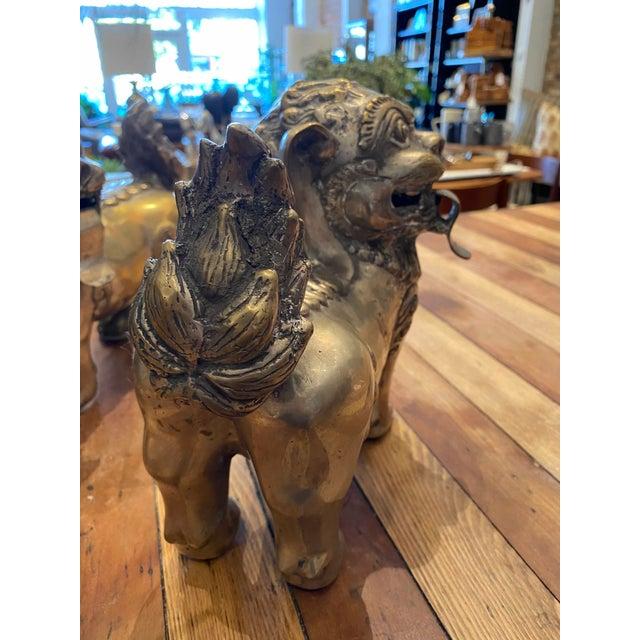 Vintage Brass Foo Lion Dogs For Sale - Image 4 of 6