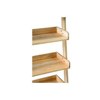 St. Paul Ladder Shelf Preview