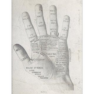 Palm Reading Print of Illustration For Sale