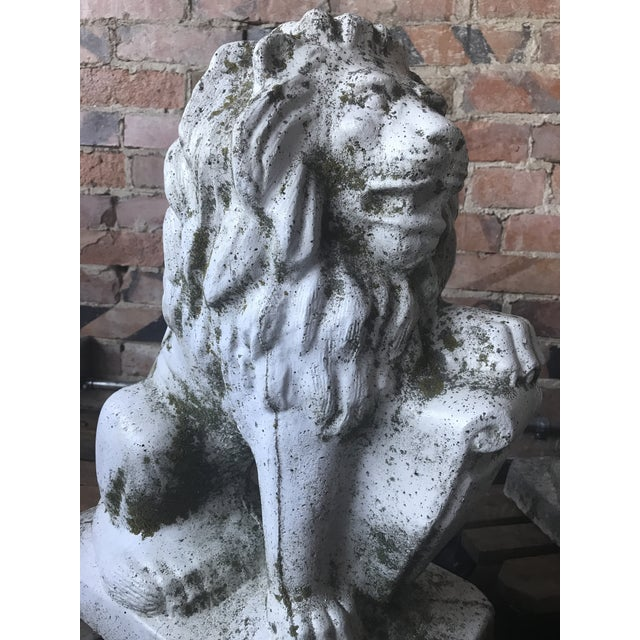 Stone Lion Garden Statues - a Pair For Sale - Image 4 of 11