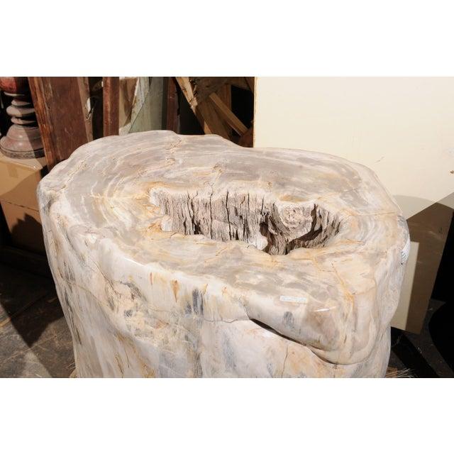 Wood Impressively Large Petrified Wood Table Base For Sale - Image 7 of 12