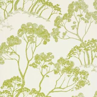 Schumacher Timber! Wallpaper in Leaf For Sale