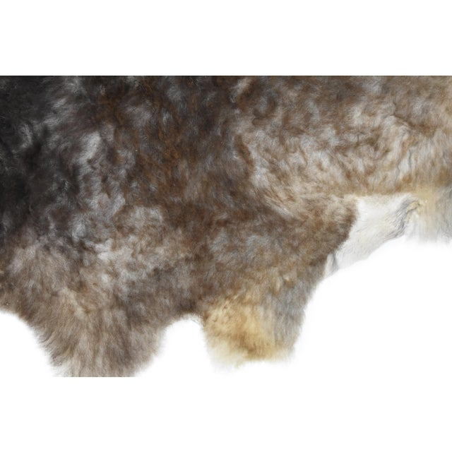 "Wool Sheepskin Pelt Handmade Rug - 2'6"" x 3'8"" - Image 6 of 8"