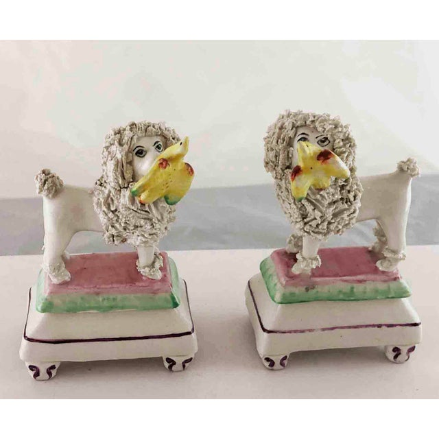 Late 19th Century Staffordshire Poodles Retrieving Birds - a Pair For Sale - Image 9 of 10