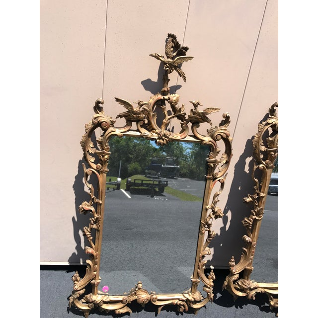 "Pair of matching 19th century English Chippendale mirrors, carved gilt wood with phoenix crest, 53"" x 27"". Phoenix Crest..."