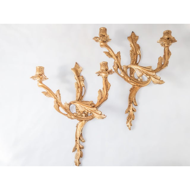 Gold Antique French Gilt Candle Sconces Louis XV Gold Ormolu Rococo - A Pair For Sale - Image 8 of 8