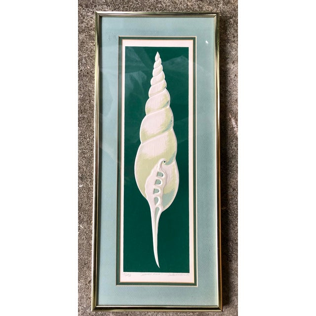 Nautical 1980s W. Woodard Signed Embossed Shell Framed Print For Sale - Image 3 of 9
