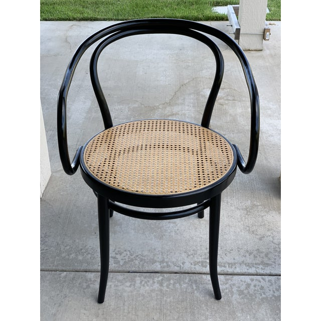 Wood 1950s Vintage Stednig-Thonet Bentwood Cane Parlor Chairs -A Pair For Sale - Image 7 of 10