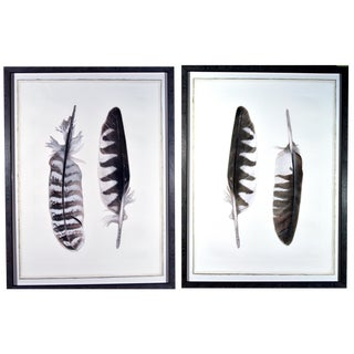 Contemporary Feather Engravings, Pair, Milan, Italy.