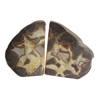Septarian Stone Bookends - a Pair For Sale