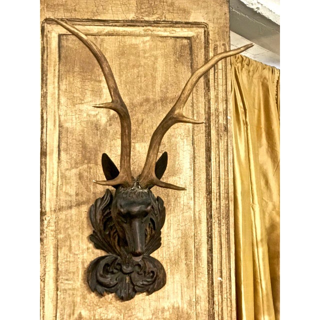 Carved Black Forest Stag Head Mount With Antlers For Sale In Los Angeles - Image 6 of 6