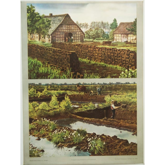 1960s German vintage peat removal school poster For Sale - Image 5 of 7