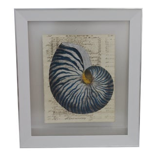 Hand Painting of Blue Nautilus on Circa 1719 Manuscript Paper Framed With Reversing View For Sale