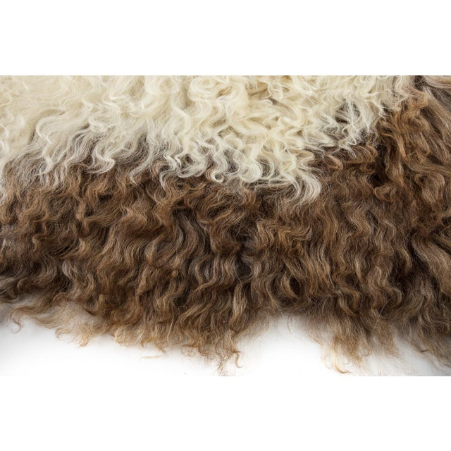 2010s Hand-Tanned Sheepskin Pelt Rug - 2′3″ × 3′6″ For Sale - Image 5 of 7