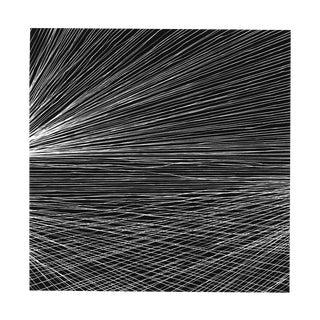 "Tenesh Webber ""Fall"", Photograph For Sale"
