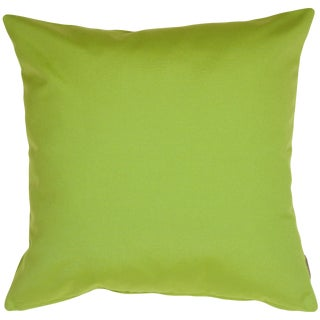 Contemporary Sunbrella Macaw Green Outdoor Pillow - 20x20 For Sale