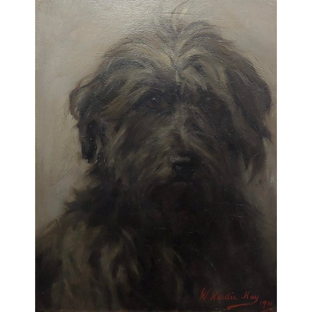 William Hardie Hay -Portrait of a Beautiful Black Terrier Dog -Oil Painting C.1911 For Sale - Image 4 of 8
